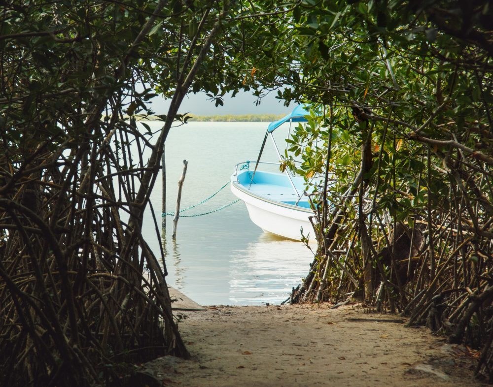 immersioni Yucatan Messico