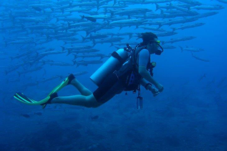 Matteo in immersione a Sipadan