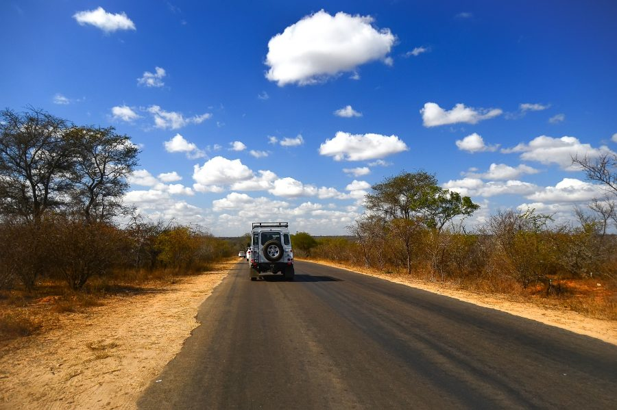 Kruger Sudafrica Safari savana