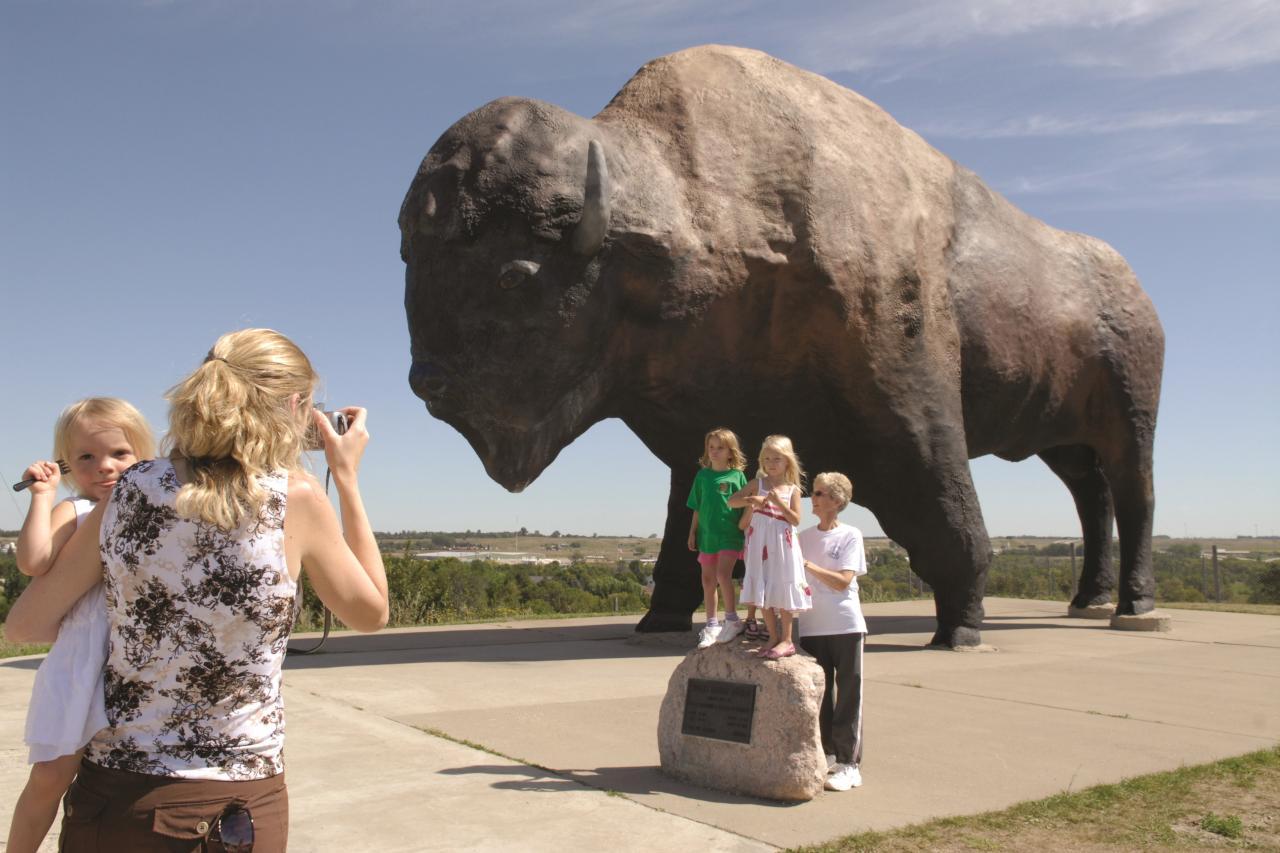 Theodore Roosevelt National Park North Dakota Big Buffalo