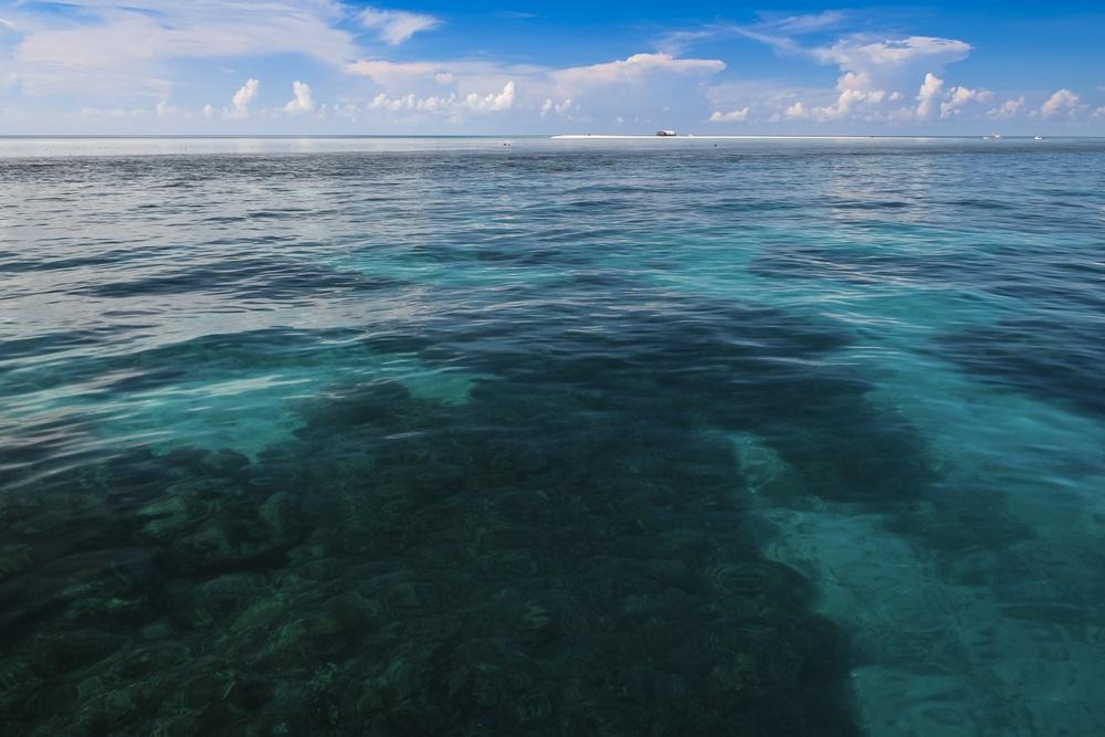 Il reef di Tubbataha, Filippine, è l'unico Patrimonio dell'Unesco completamente sott'acqua