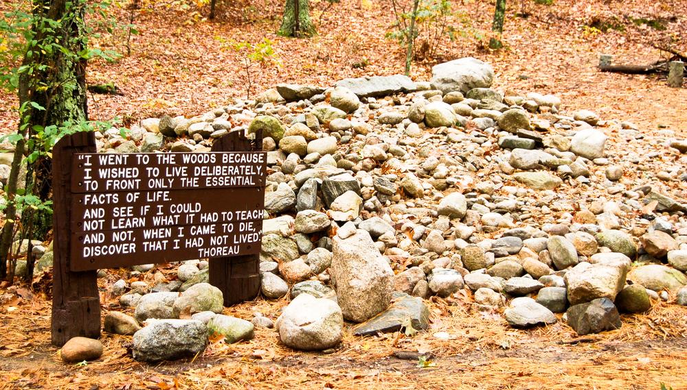 New England Literary Tour Thoreau Walden Woods