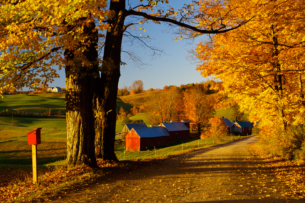 New England Literary Tour - Country Massachusetts
