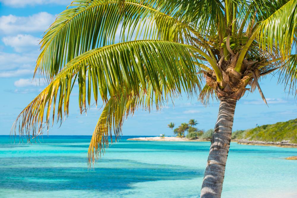 Viaggi Bahamas