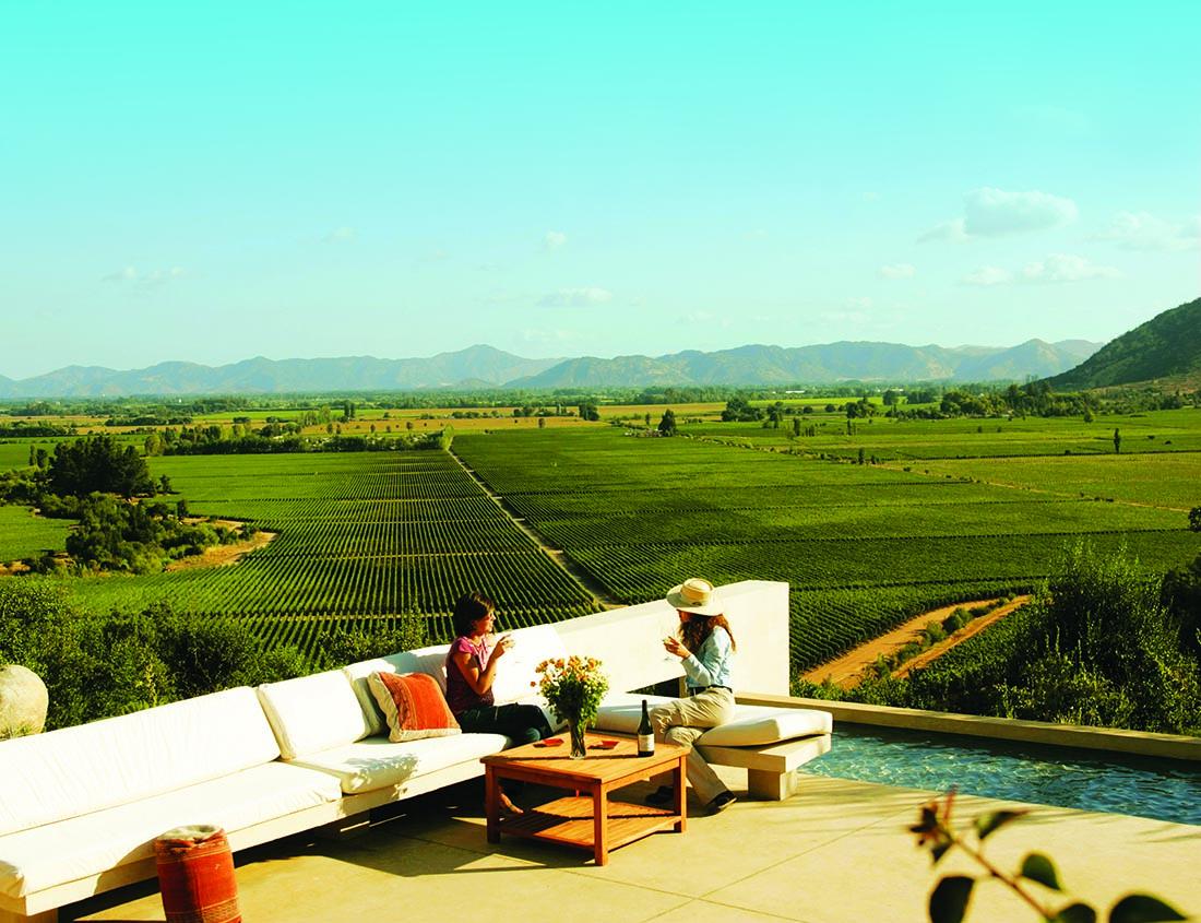 Viaggio in Cile 10 cose da vedere vino Valle de Colchahua