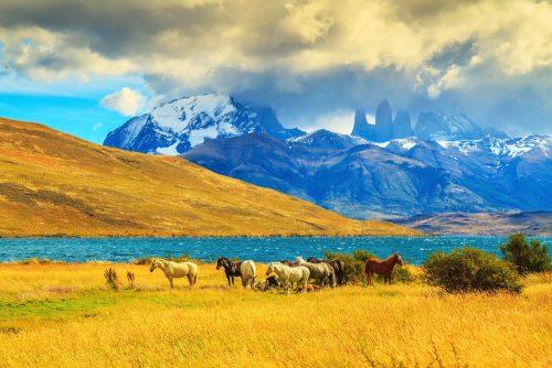 Viaggio in Cile, le 10 cose da vedere copertina