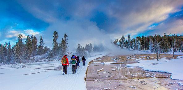 Jackson Hole Yellowstone
