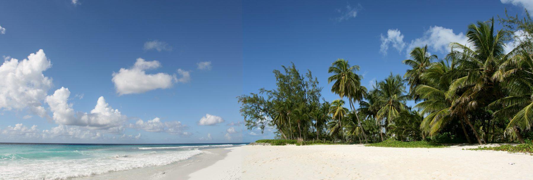 New York e Barbados
