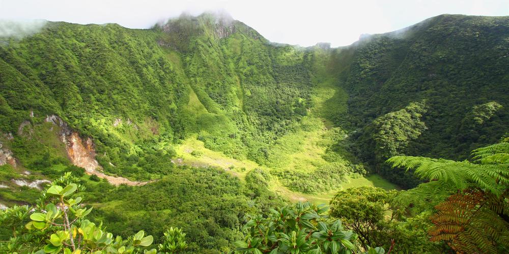 Saint Kitts e Nevis Lamiuga