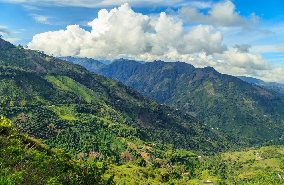 Patrimoni UNESCO della Colombia paesaggio culturale del Caffé