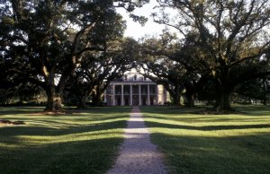 Le piantagioni della Louisiana viaggio