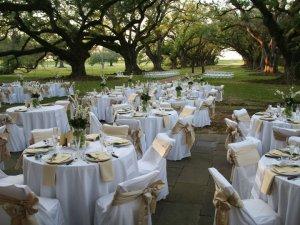 Oak Alley Plantation Matrimonio Piantagioni della Louisiana