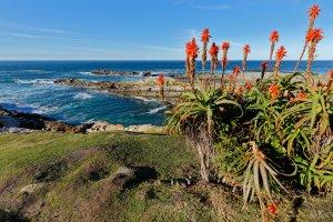 Vacanza mauritius sudafrica
