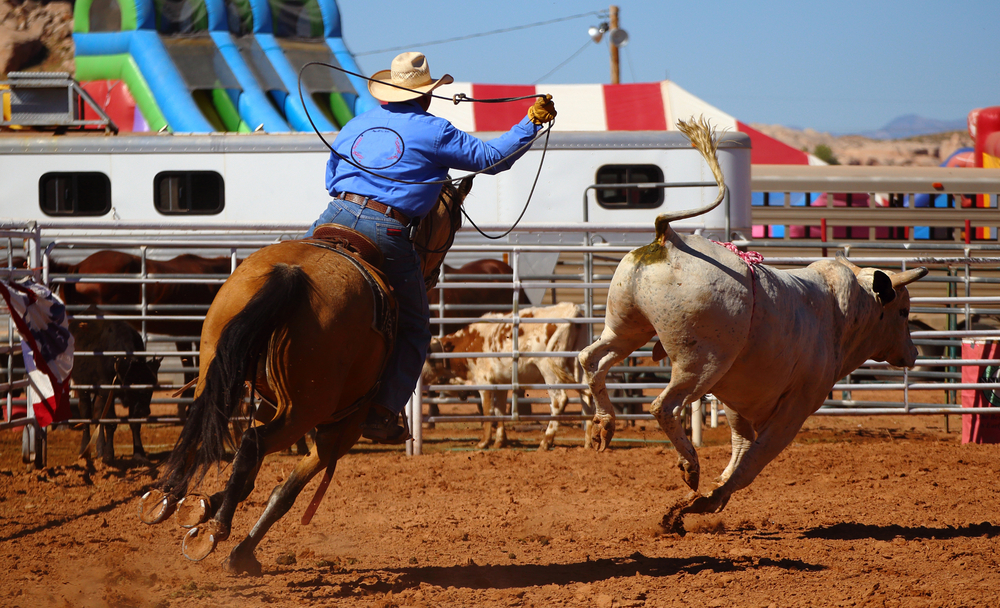 Icone western in Wyoming e Montana rodeo cowboy