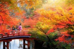 foliage più spettacolari del mondo