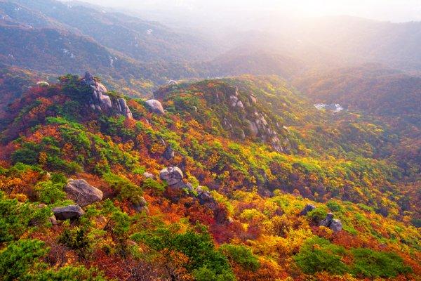 Bukhansan National Park Corea del Sud foliage