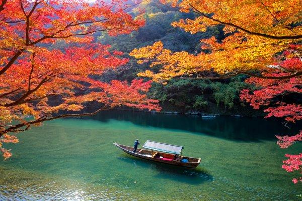 I foliage più spettacolari del mondo viaggio in Giappone Kyoto