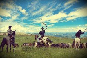Viaggio ranch Wyoming e Montana