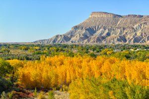 Viaggio in Colorado Grand Junction