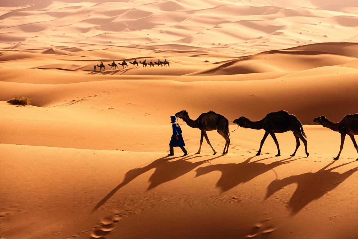Le tradizioni di Abu Dhabi