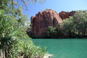 Outback e Bush in Queensland 1