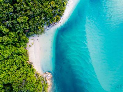 Queensland ecosistemi viaggio in Australia