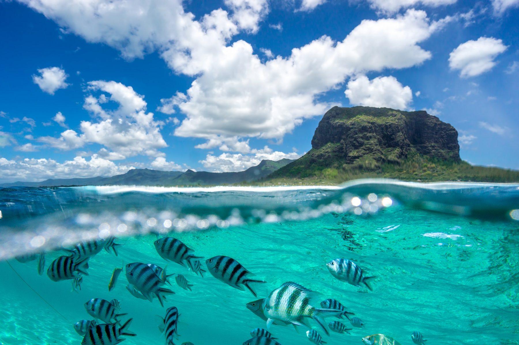 Mauritius - MakeMySafari