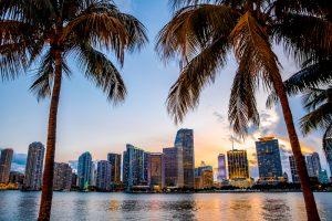 Viaggio miami e golfo del Messico