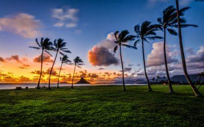 hawaii_oahu-e1483527550727-1.jpg
