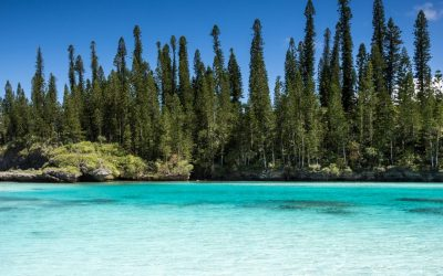 Tropical Beach Paradise on Isle of Pines in New Caledonia (ile des pins). The weather is nice and sunny with few clouds and crystal clear water.