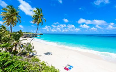 Bottom Bay, Barbados - Paradise beach on the Caribbean island of Barbados. Tropical coast with palms hanging over turquoise sea. Panoramic photo of beautiful landscape. Travel destination for vacation.