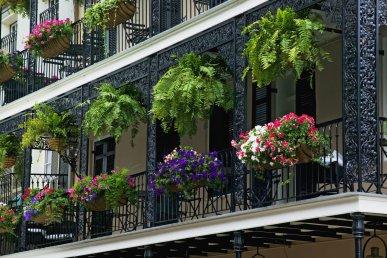 Un assaggio di New Orleans