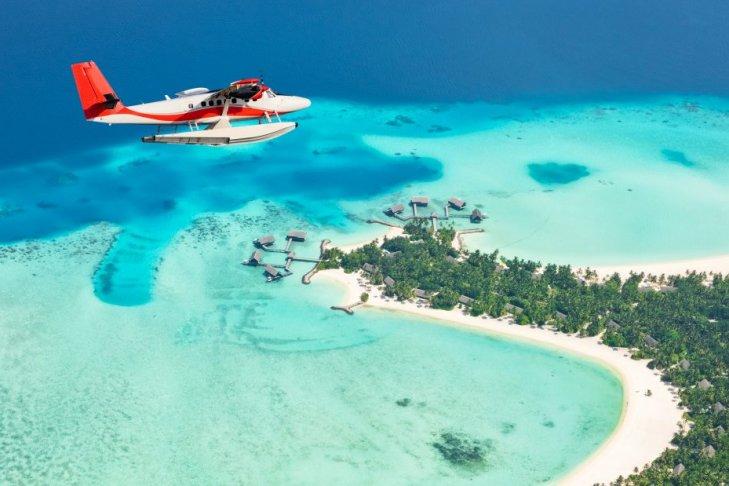 Le cinque migliori immersioni alle Maldive nell'Atollo di Ari