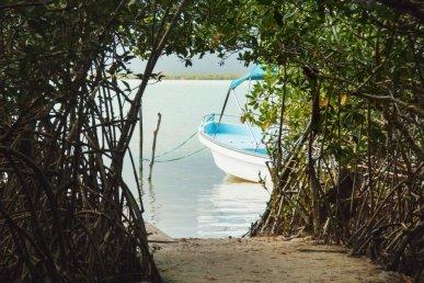Yucatan: immersioni con i Maya!