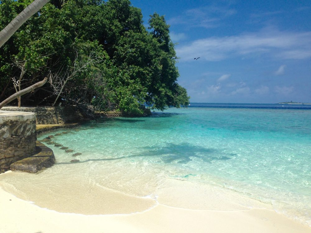 Malé maldive