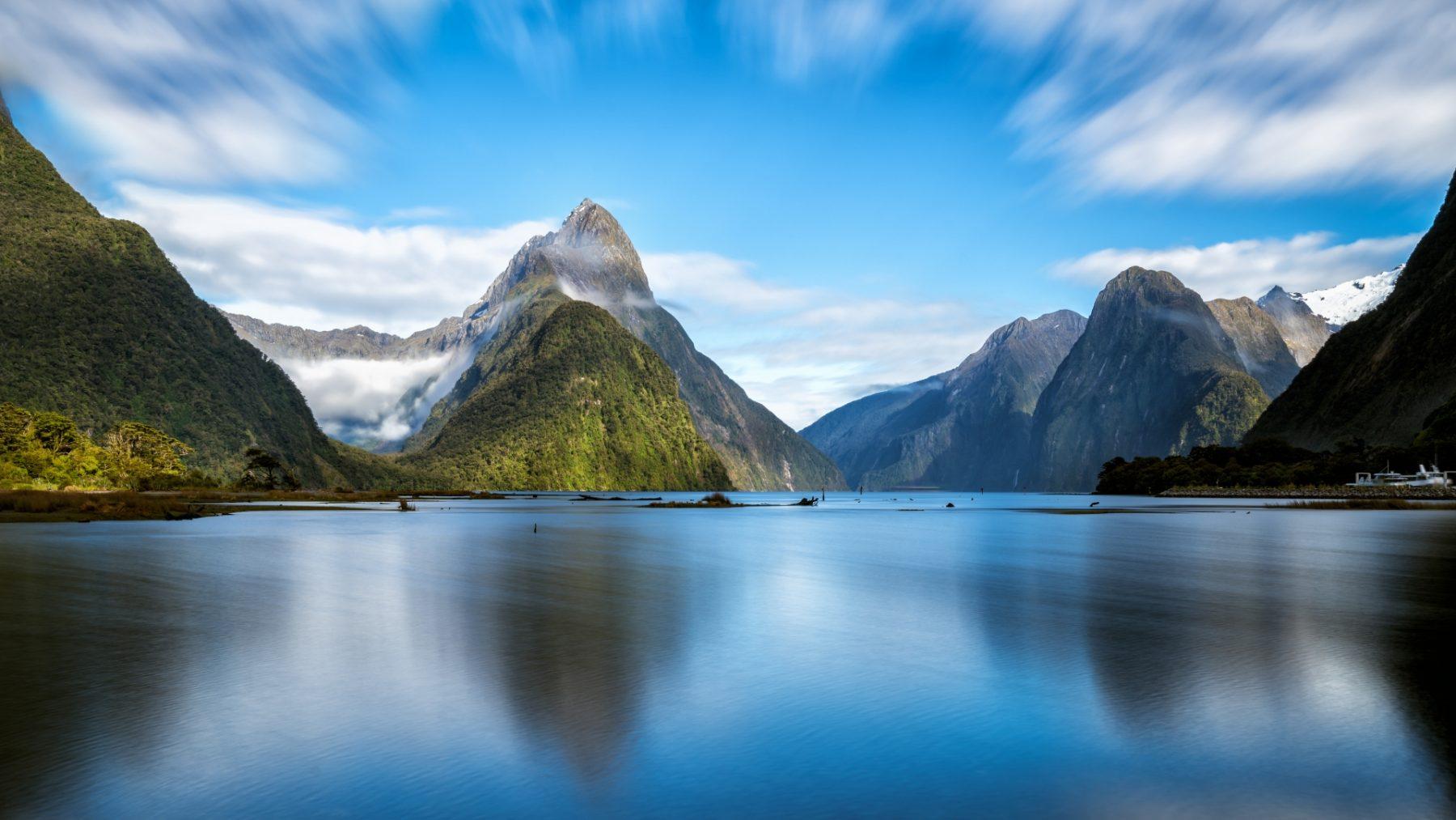 Nuova Zelanda Animali Milford Sound Fjord