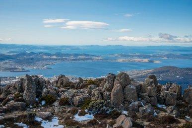 Gli animali della selvaggia Tasmania!