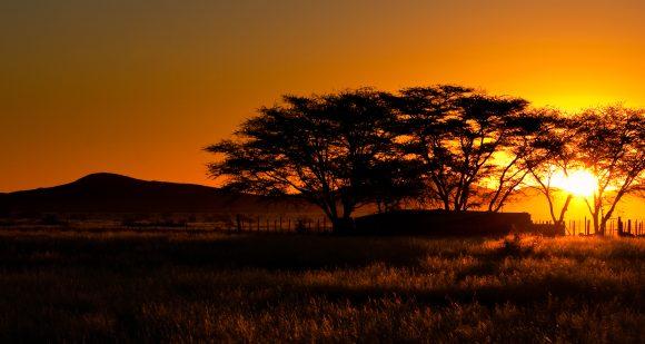 Sognando la Namibia…