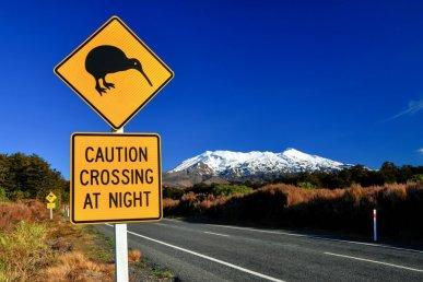 Viaggio organizzato in Nuova Zelanda: un tour in 4x4