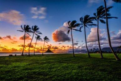 Viaggio alle Hawaii: da Oahu e Maui fino a Big Island