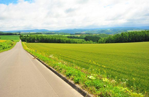 Self Drive in Hokkaidō