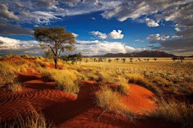 Tour della Namibia: scopri cosa vedere con Alidays