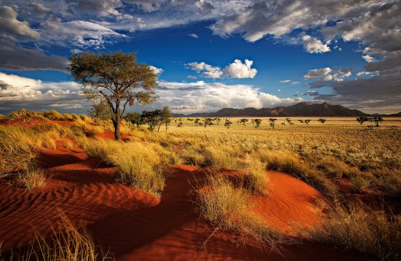 Tour in Namibia
