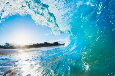 Viaggio a Tokyo, Seoul e Hawaii City 'n Surf