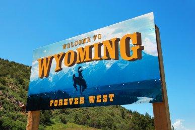 Yellowstone National Park: viaggio nel Wyoming più selvaggio