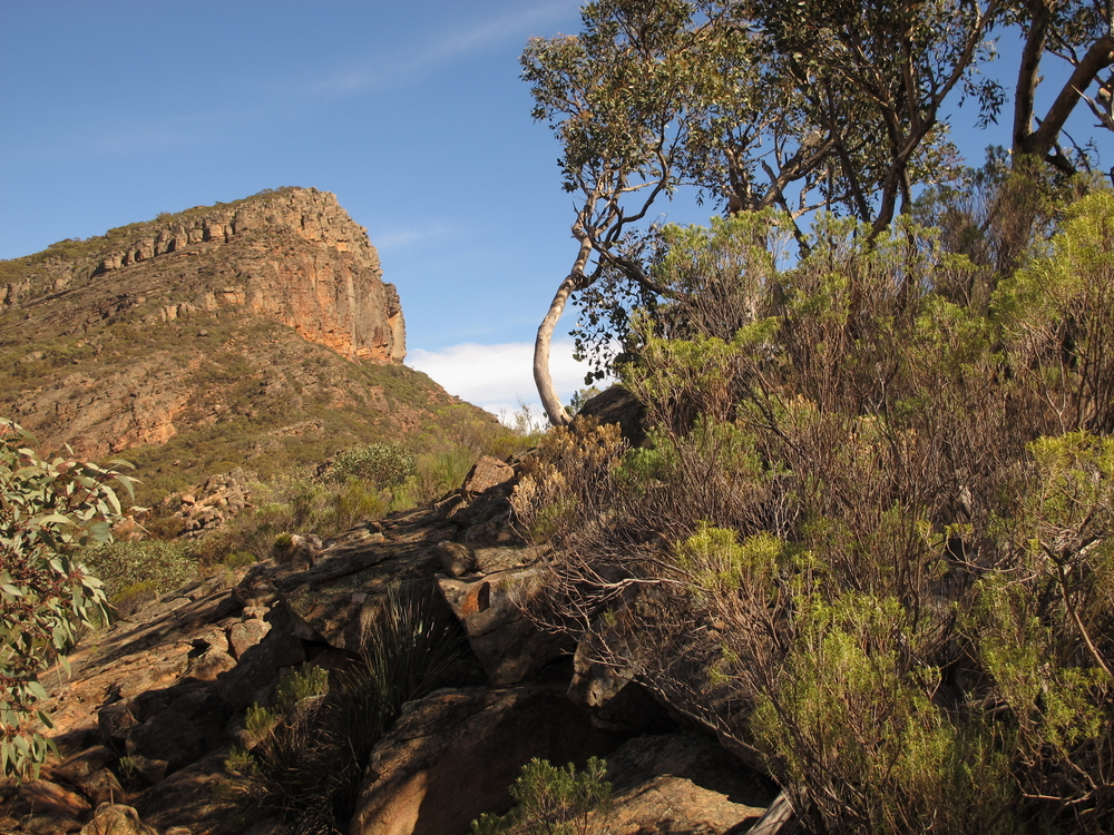 South Australia Flinders Ranges