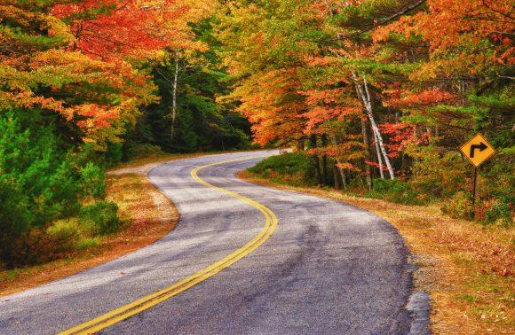 Viaggi letterari: il tour del New England