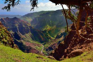 Gran hawaii tour Waimea canyon