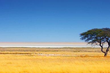 Viaggio in Namibia: un tour nel deserto