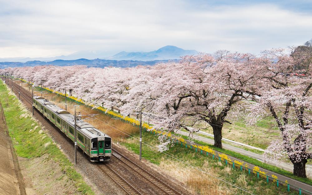 viaggio Giappone 4